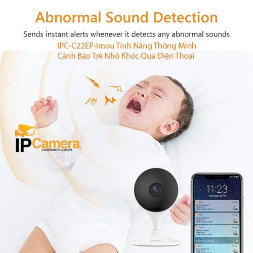 Đây là dòng camera dành cho bé con. Tính năng này sẽ báo động ngay qua điện thoại. Khi phát hiện tiếng trẻ khóc