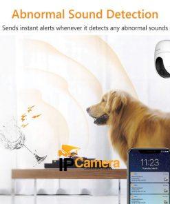Tính năng phát hiện âm thanh và báo qua điện thoại